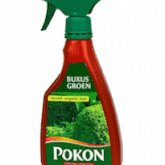 pokon buxus groen voeding